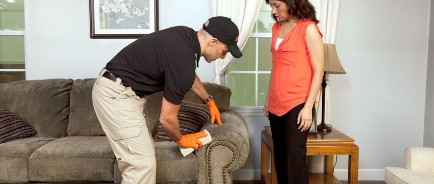 Coldwater, MI carpet upholstery cleaning